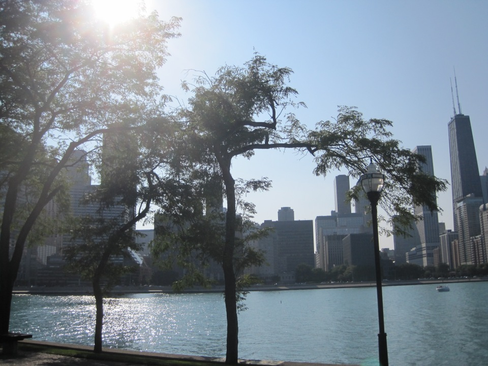 View from Olive Park