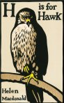 Helen-Macdonald-H-is-for-Hawk